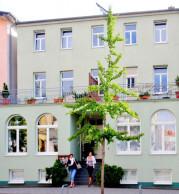 Villa Ostseegruss