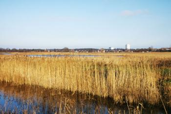 Die Renaturierung und Aufwertung des Diedrichshäger Moors durch die Rostock Port GmbH ist abgeschlossen.