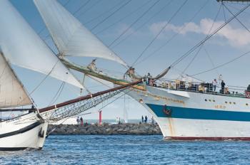 Der Countdown für die 27. Hanse Sail Rostock läuft.