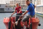 Die Biologen Jenny Byl und Dr. Sven Wieskotten experimentieren mit Robben auf einem Arbeitsboot.