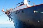 """Das russische Segelschulschiff """"Sedov"""" hat an der Warnemünder Pier festgemacht und kann dort besichtigt werden."""